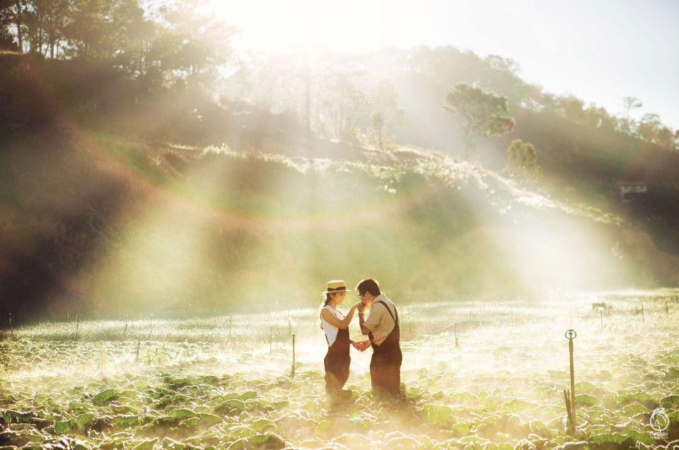 chụp ảnh cưới ở thành phố sương mù