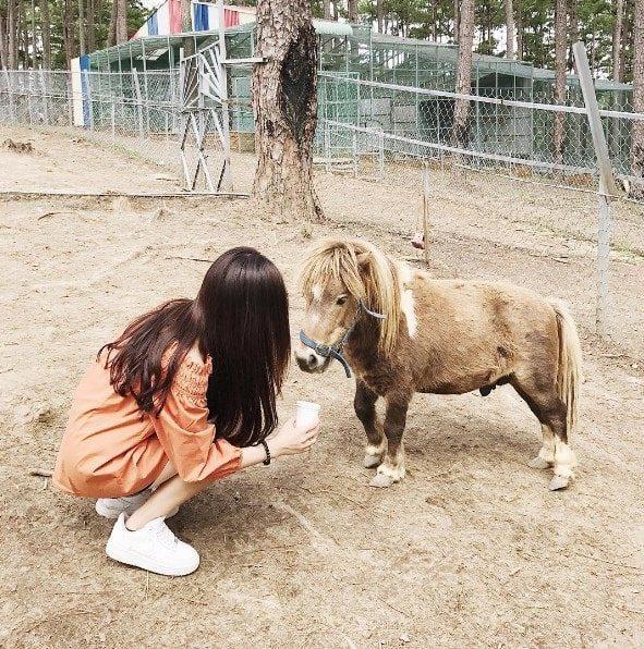 Địa chỉ sở thú Zoodoo Đà Lạt