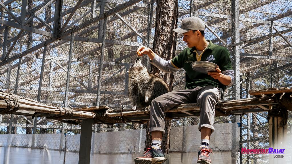 Du lịch sở thú Zoodoo