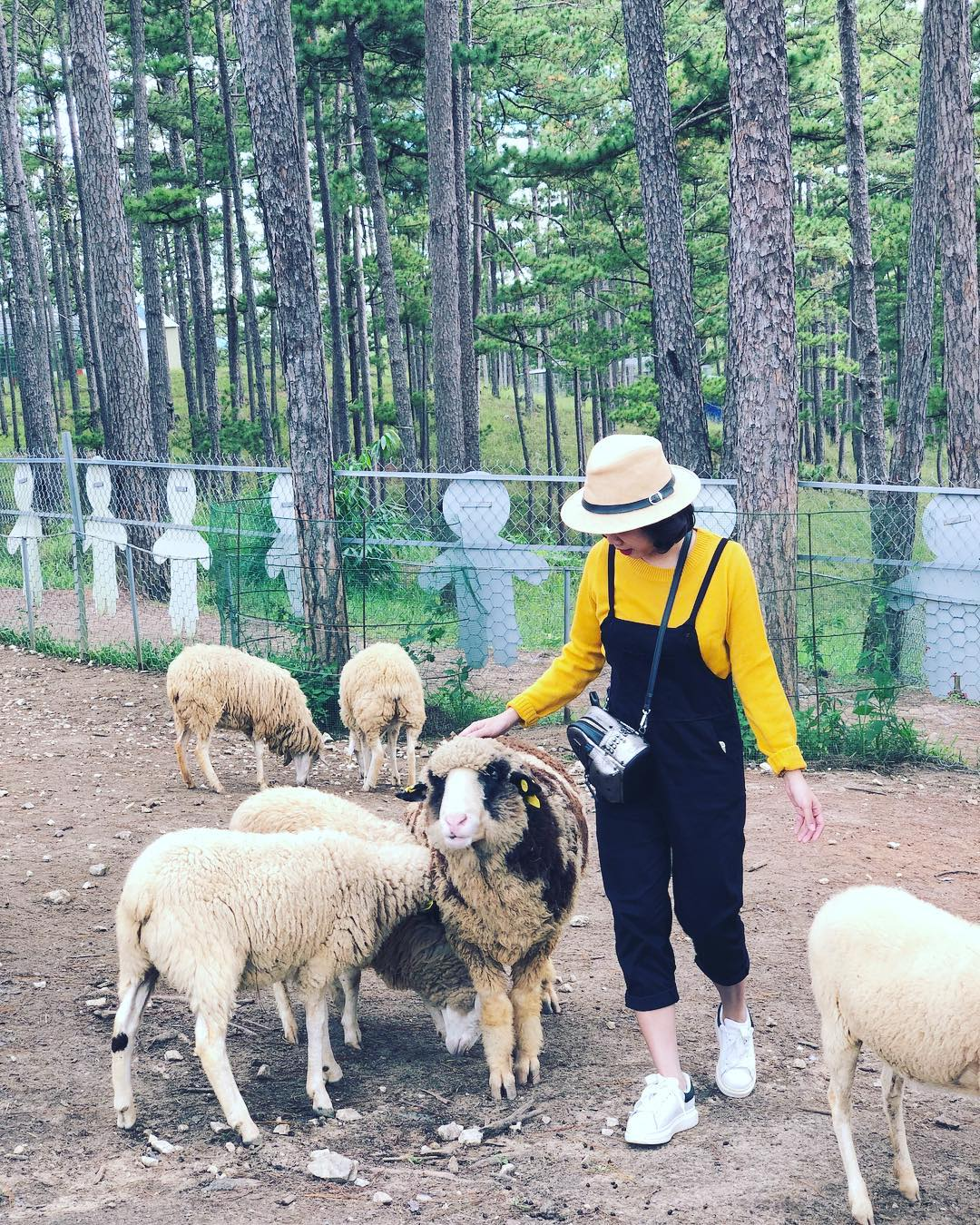 quy định sở thú Zoodoo ở Đà Lạt