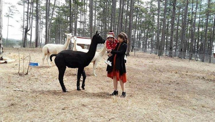 du khách tham quan ở sở thú Zoodoo Đà Lạt