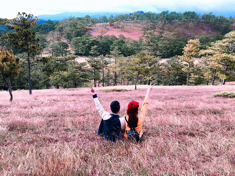 điểm thú vị ở đồi cỏ hồng