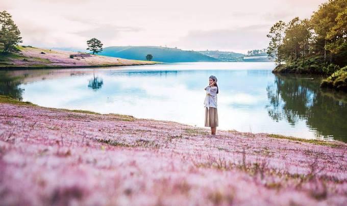 hoa và hồ nước