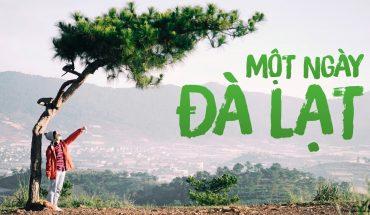 tự chọn- Hoa Dalat travel